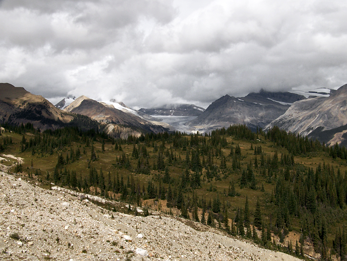 Looking North to the end of the Yoho Valley