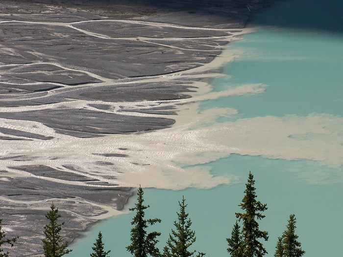 After returning from the summit, I put my sandals on and joined the masses at Peyto Lake.  Here are the runoff flats from the terminal moraine into the lake