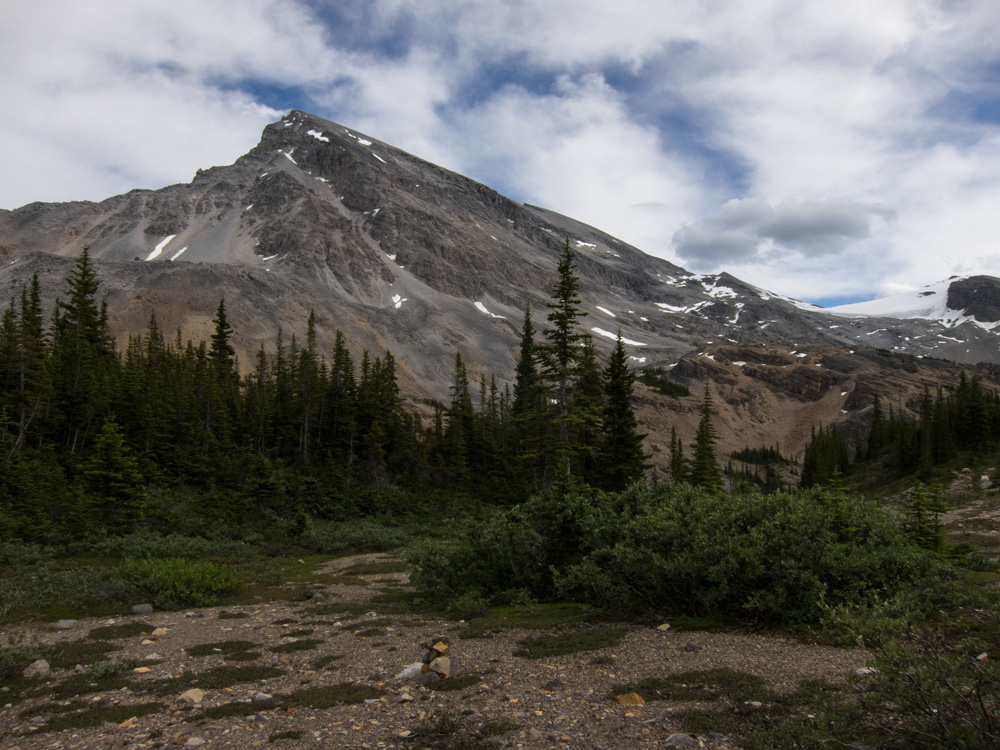 08_crowfoot_mountain